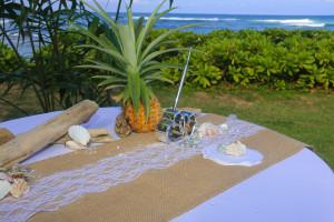 kauai-wedding-reception-38